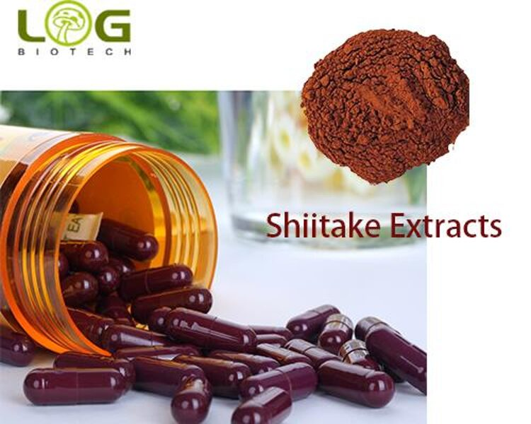 Organic Shiitake Extract Powder